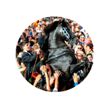 cavall23