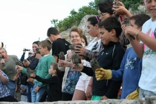 Suelta de 'mussols' Foto GOB-Menorca