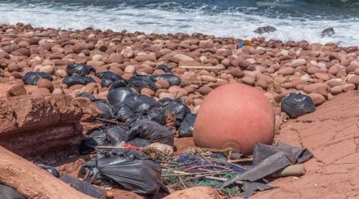 Imagen captada en el Pla de Mar (Foto: @Menorcalitoral)