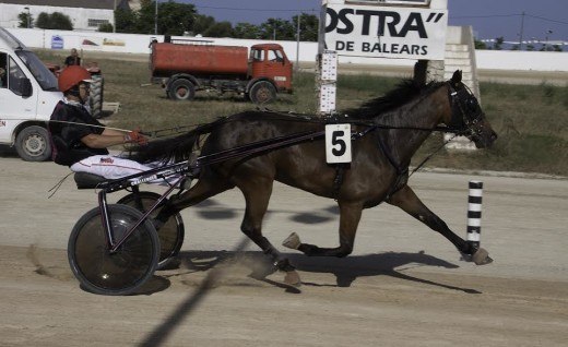 Estella Va i Ve, en un momento de la carrera (Fotos: Carlos Orfila)