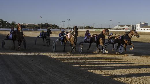 Imagen de una de una de las carreras en el municipal de Maó (Fotos: Carlos Orfila)