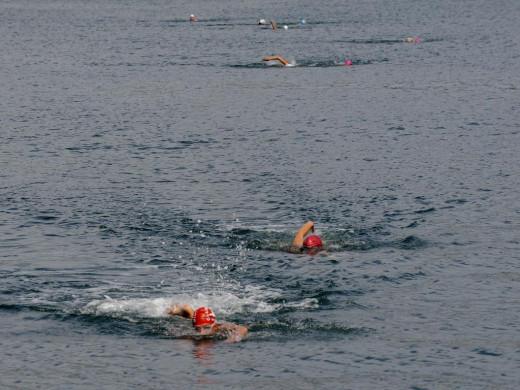 (Fotos) Fiesta de la natación en Maó