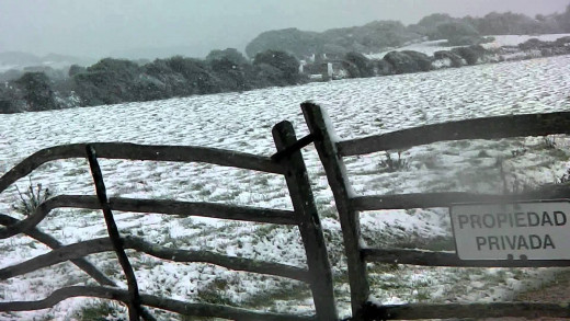 Imagen de un campo de Menorca totalmente nevado (Foto: youtube.com)