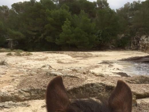 (Fotos) Así ha quedado la zona de Cala en Turqueta tras el paso del temporal