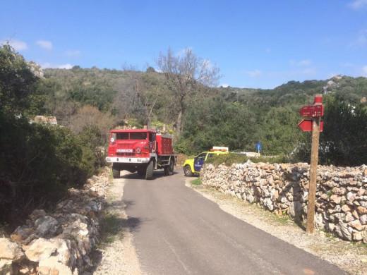 Los bomberos han tenido que retirar los restos del árbol caído mientras Endesa restablecía el suministro eléctrico en la zona.