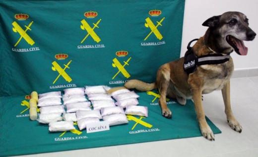 Imagen de archivo de una incautación de droga en Menorca.