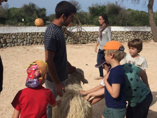 """(Fotos) Arrancan las visitas escolares al """"be"""" de Sant Joan"""