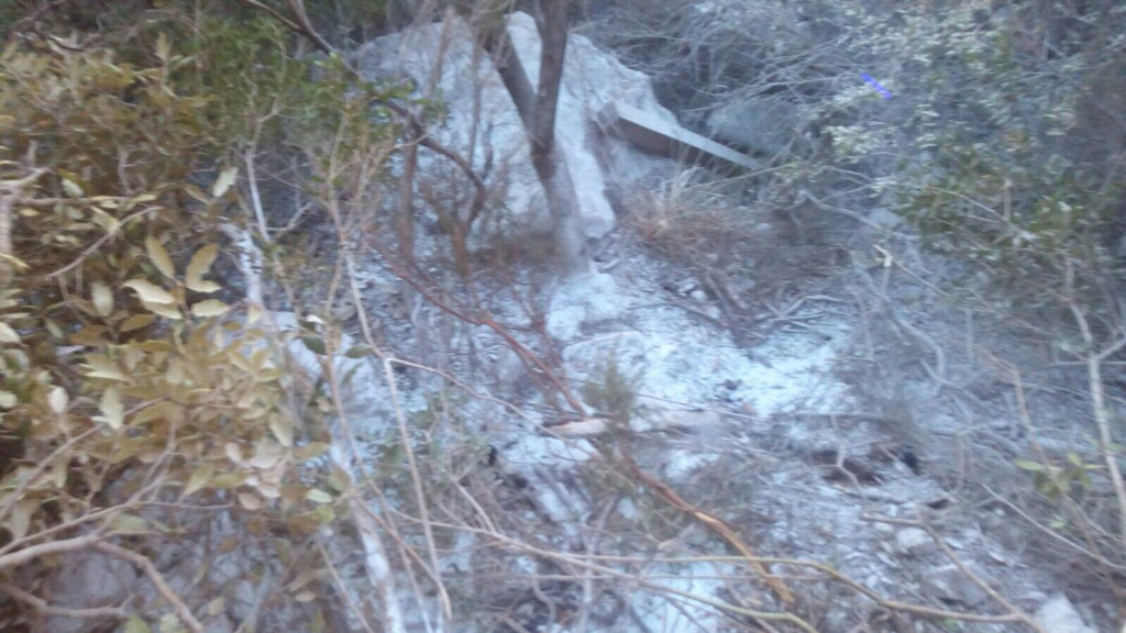 Imagen de la zona afectada por el fuego (Foto: Policía Local de Ferreries)