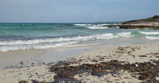 Imagen de la playa de Punta Prima