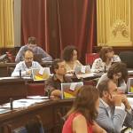 Diputados de Més, apoyando el referendum.