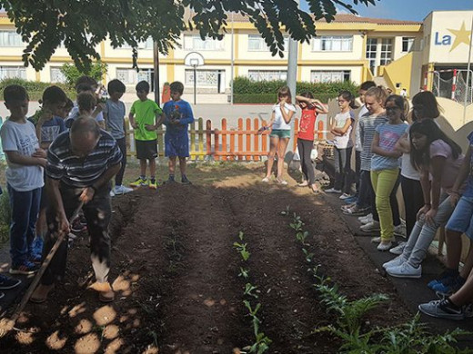 (Galería de fotos) Diez años cultivando en el huerto de La Salle Alaior