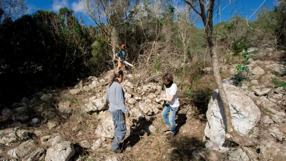 Imagen de los trabajos de acondicionamiento del poblado talayótico. Foto: María Eva Meliá