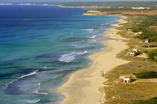 Imagen de la playa de Son Bou.