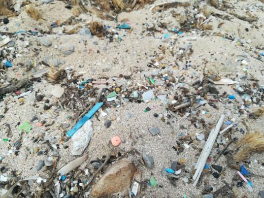 (Galería de fotos) El plástico, el gran enemigo del litoral de Menorca