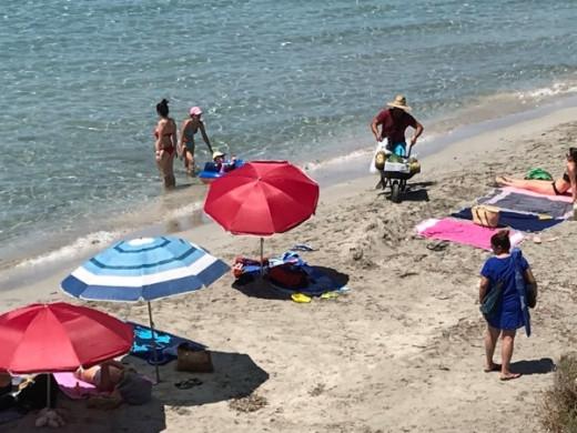 (Foto-denuncia) Venta ambulante, perros sueltos  y suciedad en la playa