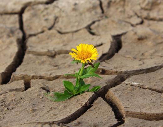 Amenaza de sequía.