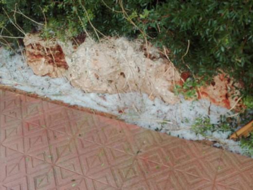 (Fotos) Fuerte granizada en Maó