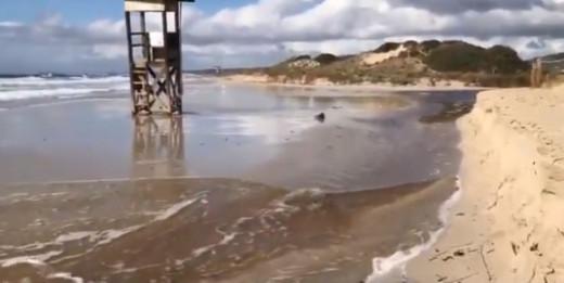 Sin playa.