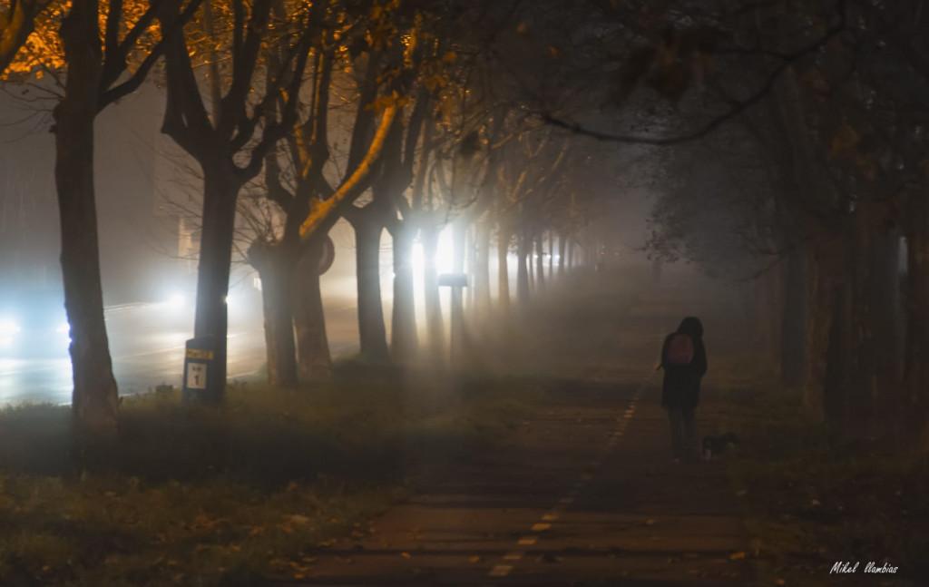 Imagen de la niebla ayer en el polígono de Maó sobre las 19.00 horas (Foto: Mikel Llambías)