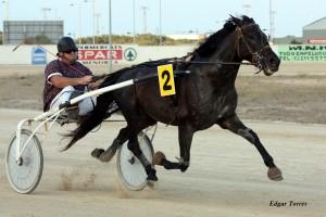 Imagen de Gasima, que se retira tras 62 victorias.
