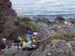 Los desperdicios podrían haberse acumulado tras las últimas tormentas.