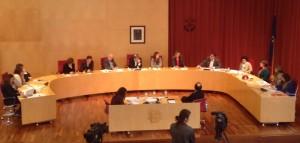 La sesión plenaria se ha convocado con carácter urgente con la aprobación de la NTT como único punto del orden del día. FOTO.- CIME