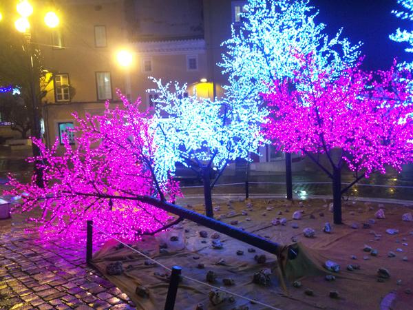arbol de navidad caido por el fuerte viento en la plaza del carmen