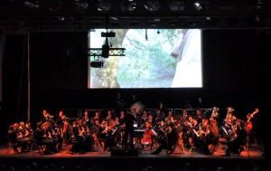 La Banda de Ciutadella en una actuación de 2013.