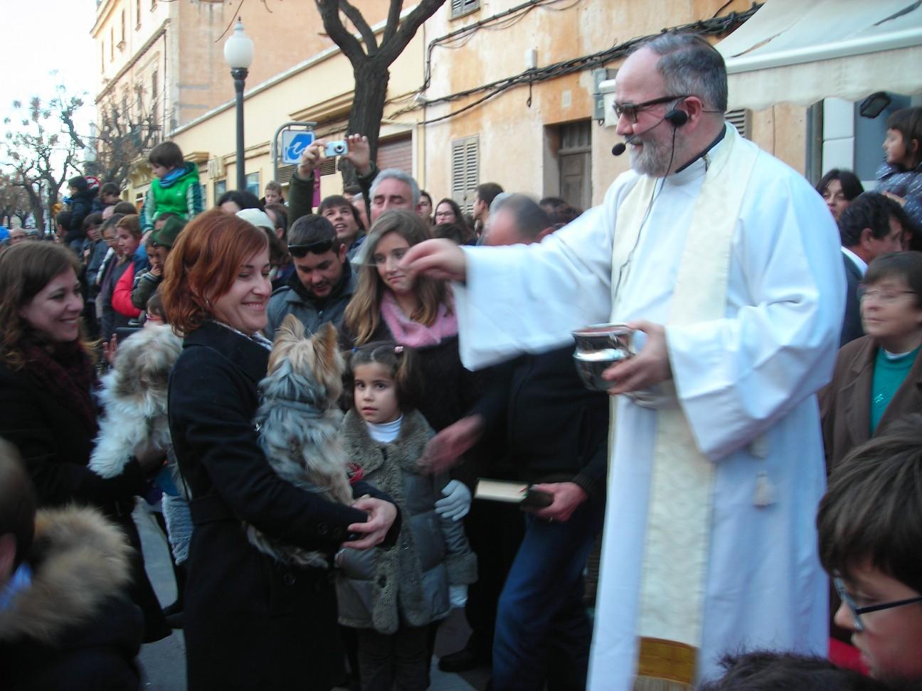 Bendición animales Ciutadella 2015.