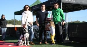 El Club Agility ha premiado a Amadeus como el perro más obediente.