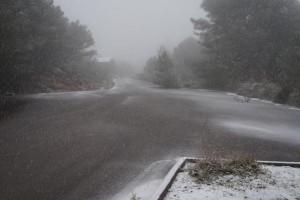 La nieve cayendo en S'Enclusa (Fotos: Tomeu Mir)