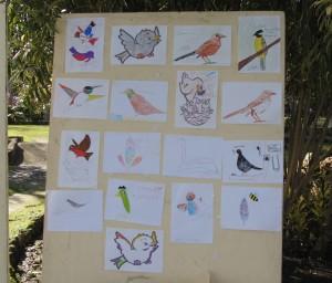Foto: Societat Ornitològica de Menorca.