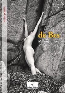 portada 'V de bes' de Núria Pujolàs