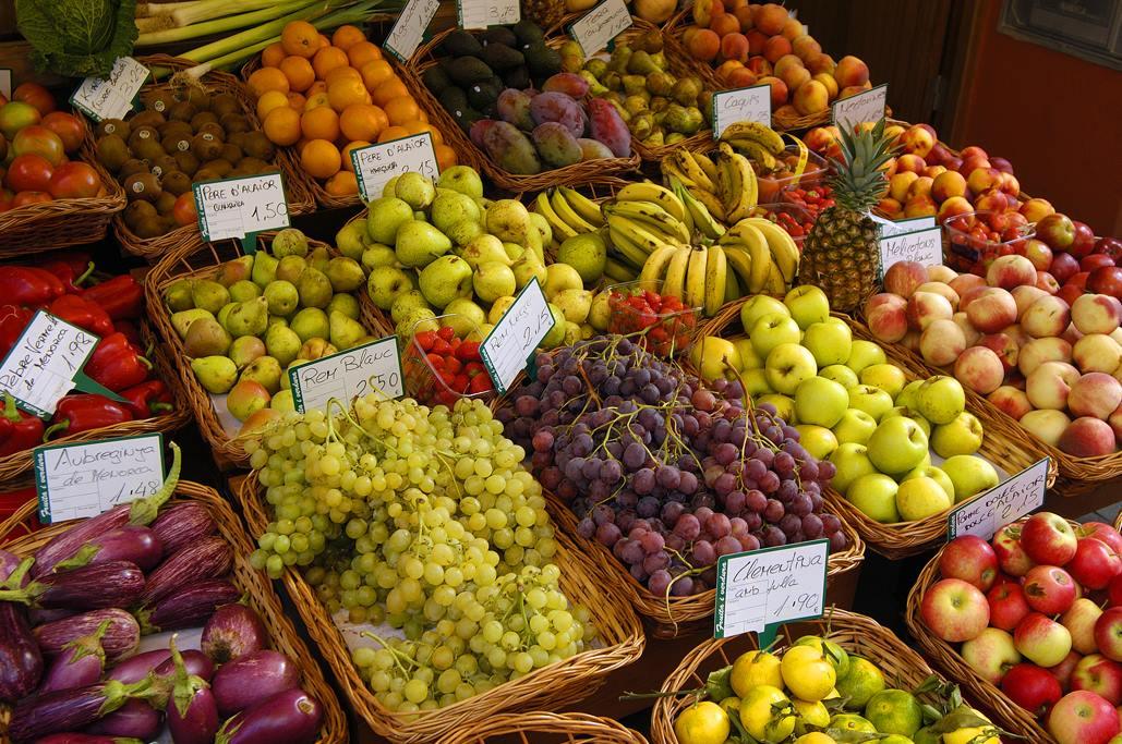 Menorca realiza actividades destinadas a mejorar la alimentación (Foto: Fra Roger)