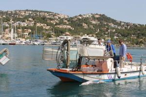 Uno de los barcos, este lunes en el Puerto de Andratx, donde se ha presentado la campaña.