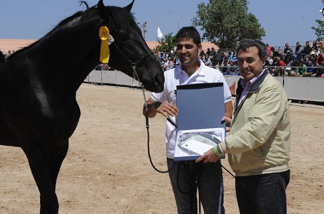 entrega de premio fira de cavalls