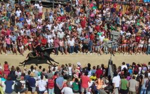 """Imagen de los 'Jocs des Pla"""" de las fiestas de este año. FOTO.- Archivo"""