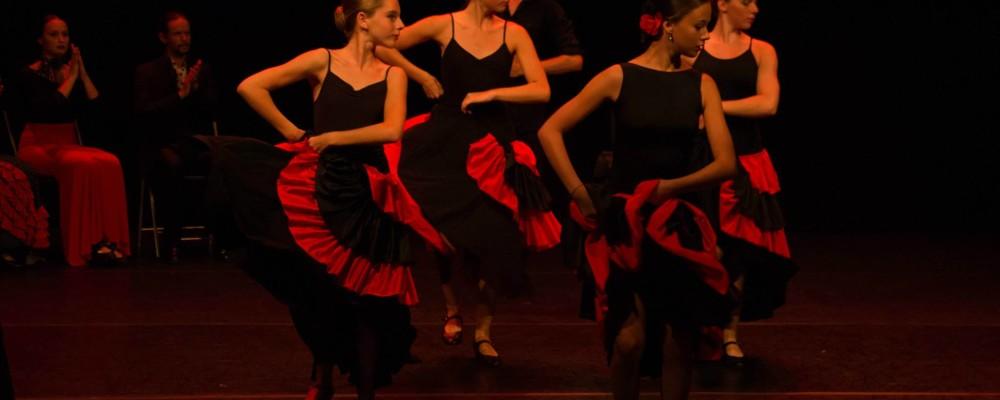 Flamenco. Foto Francesc enrich....