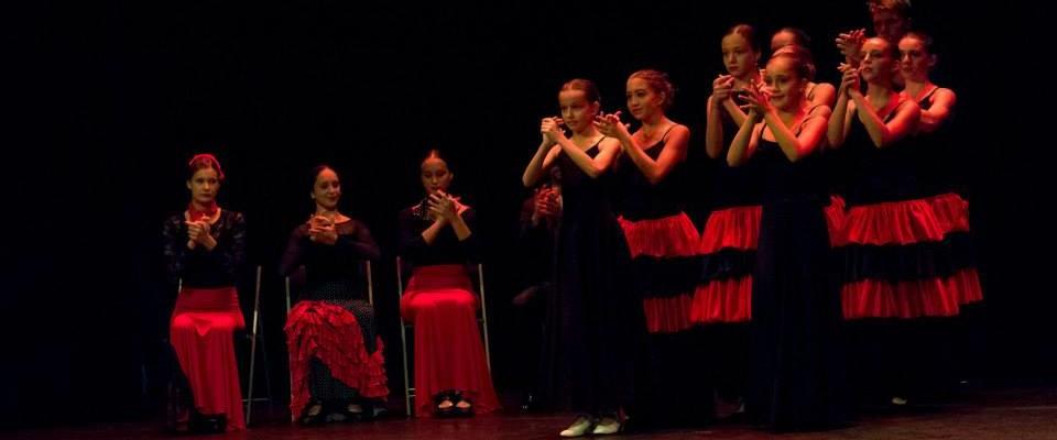 Flamenco. Foto Xisca Martí.