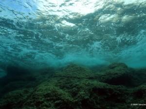 Los investigadores del proyecto Life+Indemares han inventariado el fondo marino del Canal de Menorca