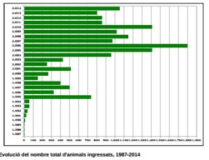 Estadística de atenciones a ejemplares desde la apertura de las instalaciones