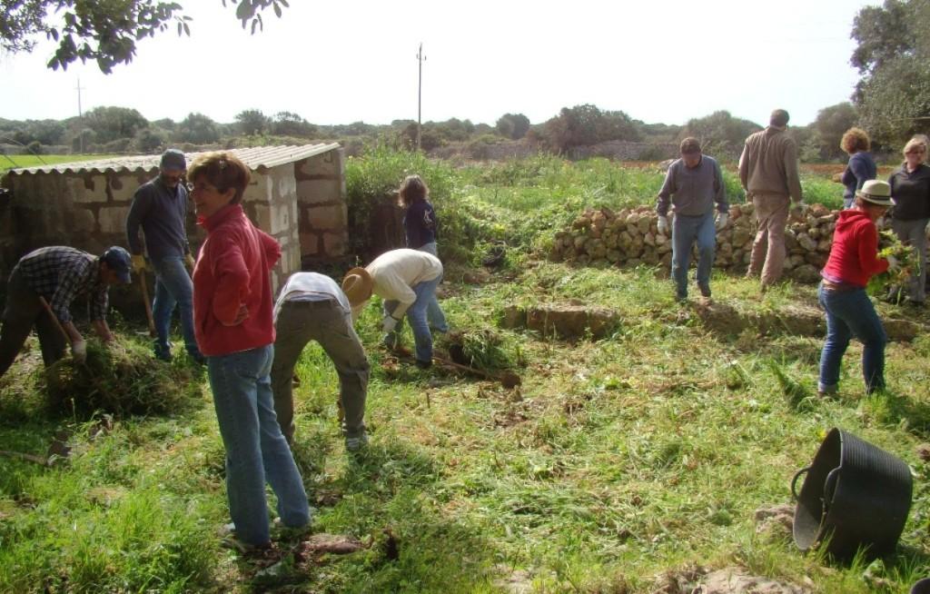 Limpieza de un corral en Son Tarí Nou. Foto: GOB-Menorca.