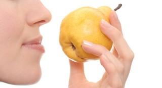 Descubrir cómo funciona el olfato es una de las propuestas del taller.