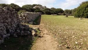 Al fondo se encuentra el poblado de Torrellafuda.