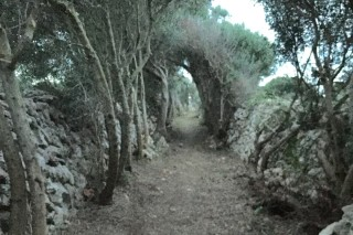 Cami de sa Barrarassa. Foto: Ajuntament de Alaior.