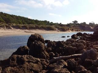 Así luce la playa des Bot mes y medio después del temporal