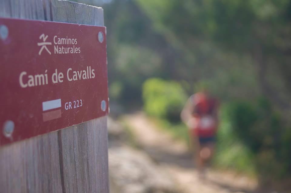 La prueba se desarolla por el Camí de Cavalls en un entorno espectacular (Foto: Trail Menorca)