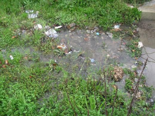 UPCM pide más limpieza al equipo de gobierno