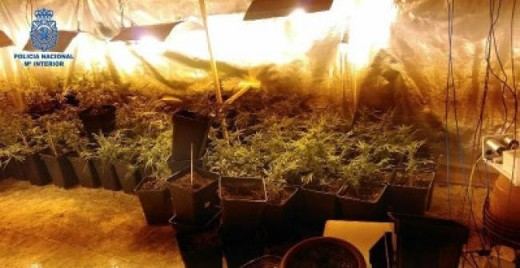 "Plantación ""indoor"" de marihuana (Foto: Guardia Civil)"