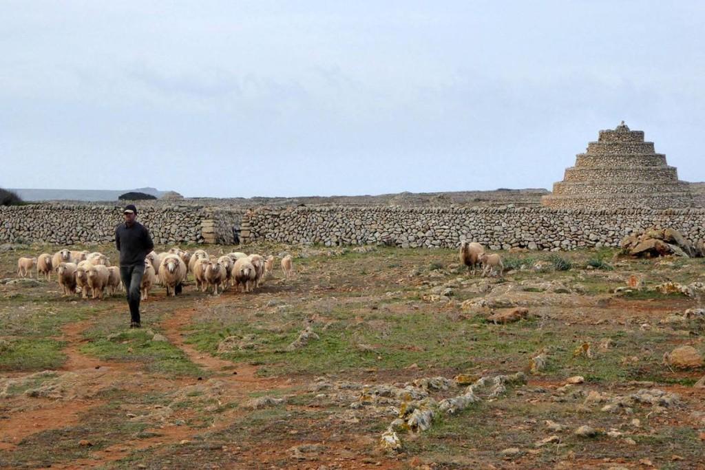 Paisaje en la zona de Punta Nati. Foto: SHA Martí i Bella.